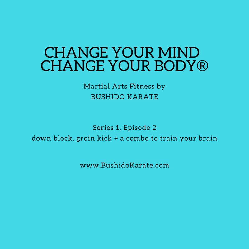 Martial Arts Fitness episode 2