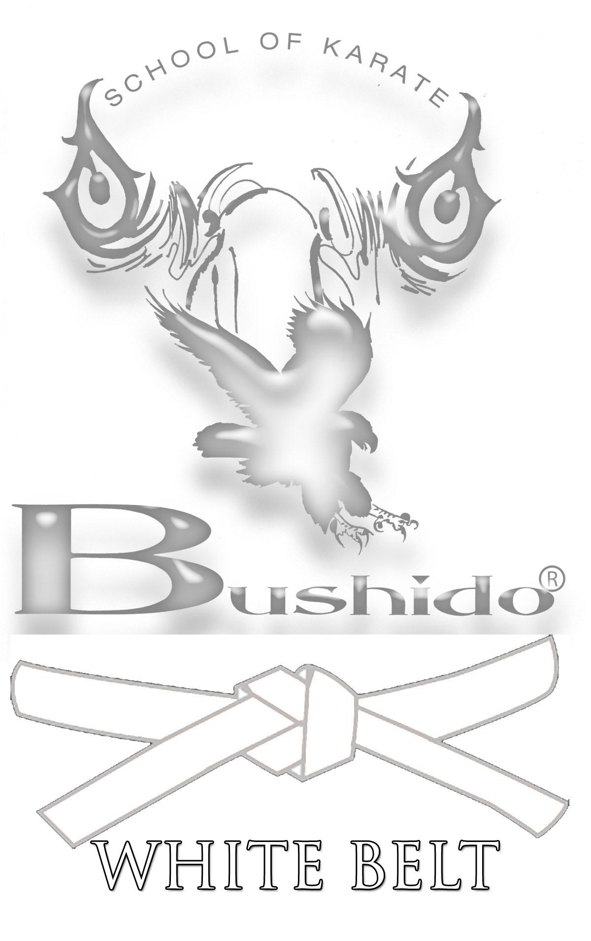 3c8e34e7962d4 Online Karate Lessons ⋆ THE BUSHIDO SCHOOL OF KARATE